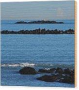 Rock Ledges And Calm Seas Wood Print