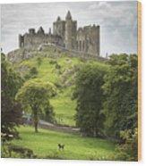Rock Of Cashel Cashel County Tipperary Wood Print