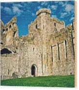 Rock Of Cashel Ireland Wood Print