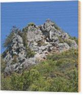 Rock On Tamalpais Wood Print