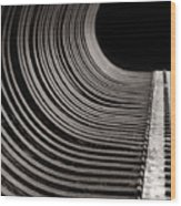 Rock Rake Wood Print