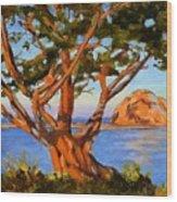 Rock Reflection - Morro Bay Wood Print