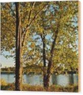 Rock River In October Wood Print