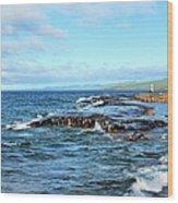 Rock Shore Wood Print