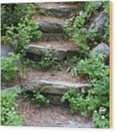 Rock Stairs Wood Print