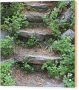 Rock Stairs Wood Print
