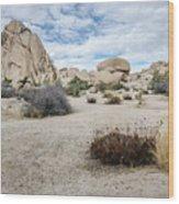 Rock Tower No.2 Wood Print