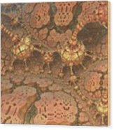 Rock Walkers Wood Print