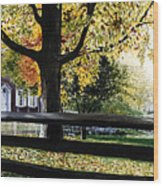 Rockford In Autumn Wood Print