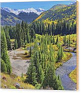Rockies And Aspens - Colorful Colorado - Telluride Wood Print