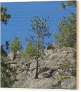 Rockin' Tree Wood Print