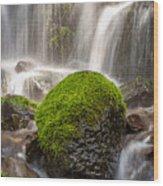 Rock'n Green Wood Print