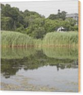 Rockport Reeds And Reflections Wood Print