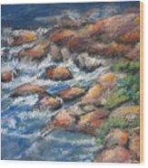 Rocks Along The Shore Wood Print
