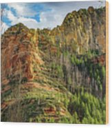 Rocks And Pines Wood Print