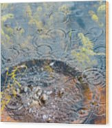 Rocks And Ripples Wood Print