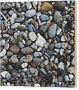 Rocks And Sticks On The Beach Wood Print