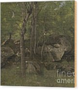 Rocks In The Forest Of Fontainebleau Wood Print