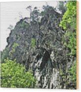 rocks-Lotrisor Wood Print