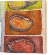 Rocks Number 3 Wood Print