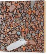 Rocks Of Lake Superior 19 Wood Print