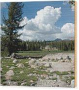 Rocks Of Tuolumne Meadows Wood Print