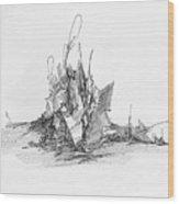 Rockscape 4 Wood Print