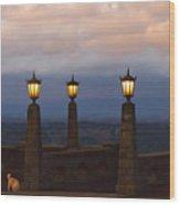 Rocky Butte Lamps Wood Print