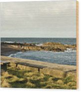Rocky Coast Bench Wood Print