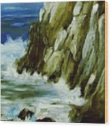 Rocky Coast Of Maine Wood Print