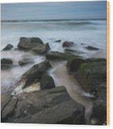 Rocky Coast Of New Jersey Wood Print