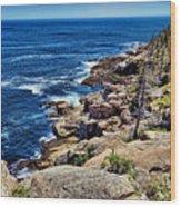 Rocky Coastline 1 Wood Print