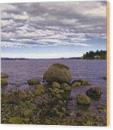 Rocky Cove In Sydney British Columbia Wood Print