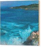 Rocky Cove Wood Print
