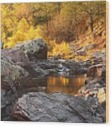 Rocky Creek II On Mill Mountain In The Missouri Ozarks Wood Print