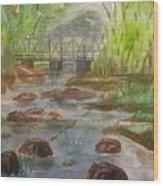 Rocky Creek In The Catskills  Wood Print