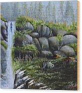 Rocky Falls Wood Print