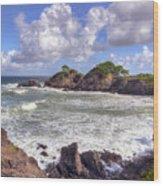 Rocky Island Wood Print