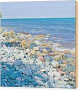 Rocky Lake Superior Shoreline Near North Country Trail In Pictured Rocks National Lakeshore-michigan Wood Print