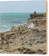 Rocky Limestone Cliff Blowing Rocks Preserve Jupiter Island Florida Wood Print