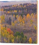 Rocky Mountain Autumn View Wood Print
