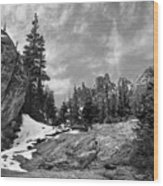 Rocky Mountain Beauty Wood Print