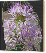Rocky Mountain Bee Flower Wood Print