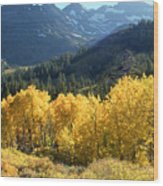 Rocky Mountain High Colorado - Landscape Photo Art Wood Print