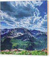 Rocky Mountain National Park I Wood Print