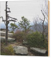 Rocky Mountain Wood Print