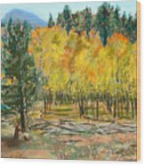 Rocky Mountain Siesta Wood Print