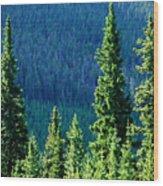 Rocky Mountain Skyline Wood Print