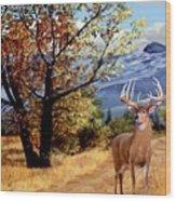 Rocky Mountain Trail Wood Print