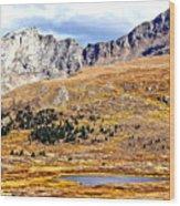 Rocky Mountain Tundra And Lake Wood Print